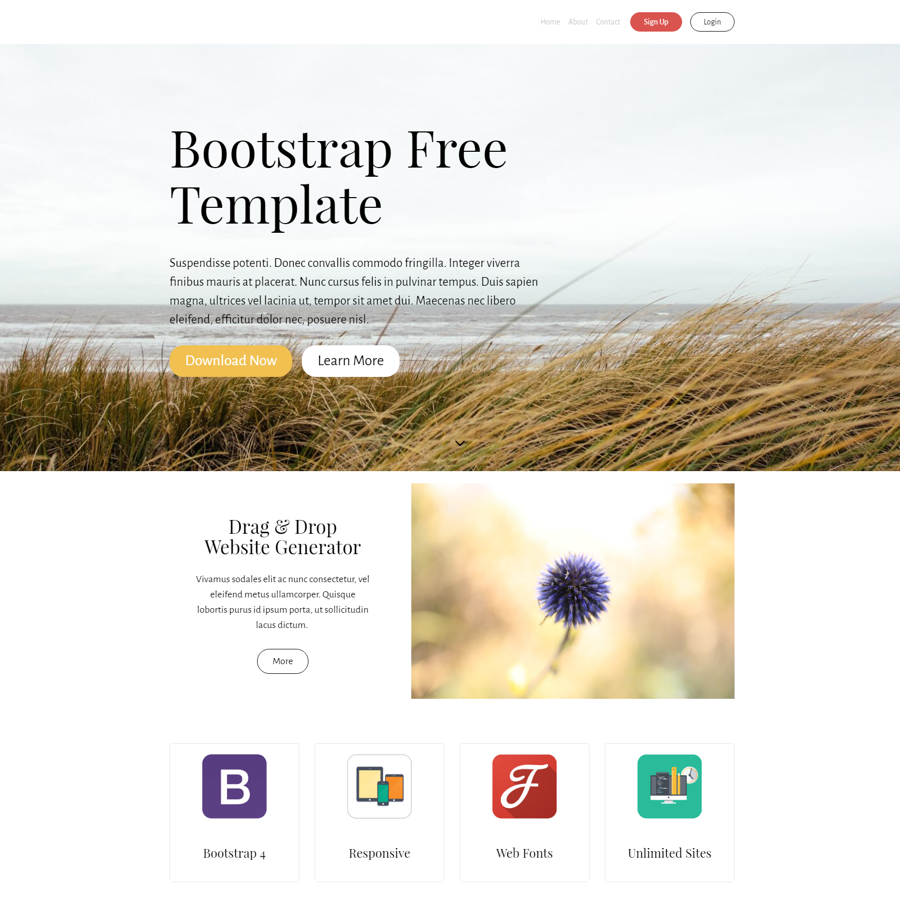 CSS3 Bootstrap PurityM Themes