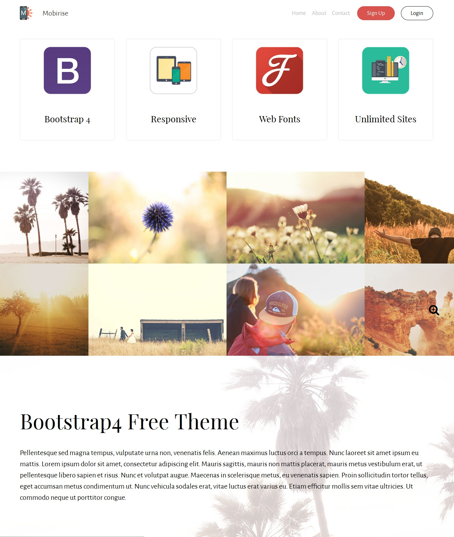 Mobile Bootstrap Simple Theme